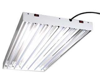 T5 Hight Output Lighting